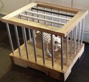 animal_cage3