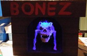 bonez5