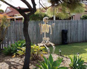 skeleton_swing1